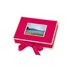Small Photobox with cut out window, pink