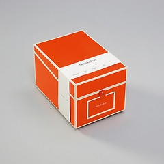 Multimedia Box with 5 adjustable tabs, orange